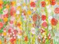 01 Blütenmeer 6.5.2015 foto arne bicker