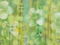 04 Blütenmeer 6.5.2015 foto arne bicker