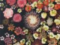 09 Blütenmeer 6.5.2015 foto arne bicker