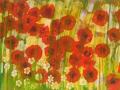 11 Blütenmeer 6.5.2015 foto arne bicker