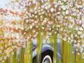 15 Blütenmeer 6.5.2015 foto arne bicker