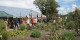 Zugang zur Freiburger Pflanzenwelt besteht am kommenden Wochenende an den Tagen der offenen Tür. Foto: Stadtgärtnerei