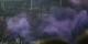 Après les émeutes lors du match à Salzburg, le FC Bâle a du jouer son match hier contre le FC Valence à huis clos. Foto: Werner100359 / Wiki Commons