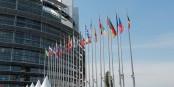 """Die Initiative """"Single Seat"""" arbeitet immer noch mit falschen Zahlen, um das Europäische Parlament  den Brüsseler Lobbyisten zum Fraß vorzuwerfen. Foto: Kai Littmann"""