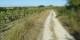 Sur le Chemin de Saint Jacques, vous avez tout le temps pour rétrograder et pour penser aux choses de la vie. Foto: Claude Haudier