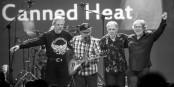 Canned Heat anno 2014: John Paulus, Larry Taylor, Fito de la Parra und Dale Spalding (von links). Foto: ZMF