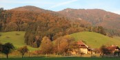Hand aufs Herz - wie kann man unsere Region am Oberrhein nicht lieben? Foto: © Eurojournalist(e) / KL