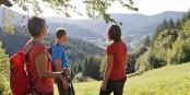 Klar, die Ortenau ist ein wunderschönes Fleckchen Erde - doch ein deutsch-französisches Tourismusangebot wäre auch nicht schlecht. Foto: WRO