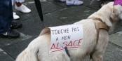 Die Auseinandersetzung um die Gebietsreform in Frankreich dürfte noch um einiges bissiger werden... Foto: Paralacre / Wikimedia Commons / CC0 1.0
