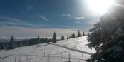 Gestern auf dem Kandel - unsere Region ist einfach atemberaubend schön. Foto: Eurojournalist(e)
