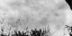 En 1942, les parachutistes de la Wehrmacht occupaient l'île de Crète. Beaucoup d'Allemands l'ignorent. Foto: Bundesarchiv, Bild 183-L22010 / Wikimedia Commons / CC-BY-SA 3.0
