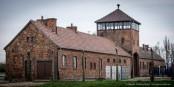 Oskar Gröning faisait partie de ceux qui faisaient tourner la machine de la terreur à Auschwitz. Foto: Claude Truong-Ngoc / Eurojournalist(e)