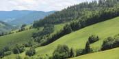 """Sur les hauteurs du """"Oberes Münstertal"""", le monde est encore comme il faut - profitez-en ! Foto: Eurojournalist(e)"""