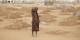 """Est-ce que les politiques européens auraient le courage de dire à cette fille au milieu de tombes que """"le bateau est plein"""" ? Foto: Oxfam East Africa / Wikimedia Commons / CC-BY 2.0"""