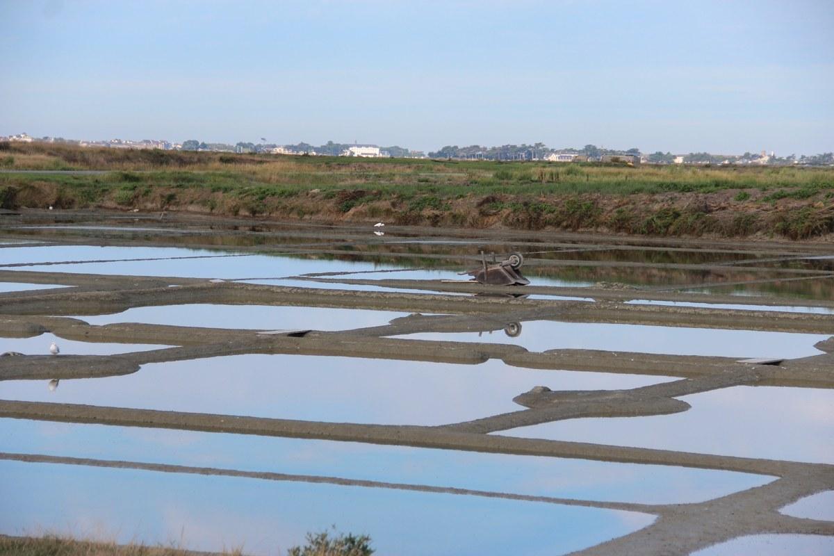 An solchen, von Meerwasser gefluteten Becken, wird in der Guérande Salz gewonnen. Foto: Eurojournalist(e)