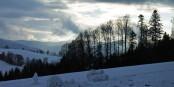 Schwarzwald und Vogesen laden auch und vor allem im Winter zu Outdoor-Aktivitäten und Winterträumereien ein. Foto: Meinolf Wewel / Wikimedia Commons / CC0