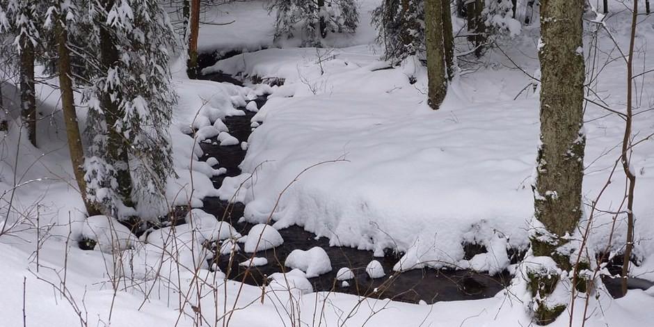 L'hiver est beau - sauf pour ceux qui n'ont pas de toit sur la tête. Foto: Rosa-Maria Rinkl / Wikimedia Commons / CC-BY-SA 4.0