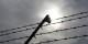Dachau. Foto: Eurojournalist(e)