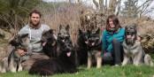Un coin du paradis pour Laetitia, Guillaume et leurs chiens... Foto: (c) Phil Bergdolt