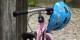 Für Kinder bis 12 Jahre ist der Fahrradhelm ab Mittwoch im Elsass Pflicht. Foto: 4028mdk09 / Wikimedia Commons / CC-BY-SA 3.0