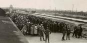 Aucun porteur d'uniforme sur la rampe d'Auschwitz n'était innocent. Foto: Yad Vashem / Wikimedia Commons / PD
