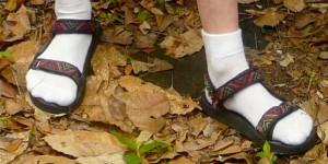Äh, nein; Wirklich nicht. Bitte. Keine weissen Socken mit Sandalen. Bitte. Foto: Oddman47 / Wikimedia Commons / CC0 1.0