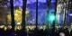 """Noch jubeln die """"Gelbwesten"""" - aber die Stimmung schlägt nun in Frankreich um. Foto: ScS EJ"""