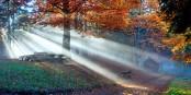 Poésie d'automne - Herbstpoesie... Foto: (c) Frantisek Zvardon / EJ 2019
