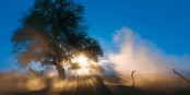 Une nature à couper le souffle - atemberaubende Natur. Foto: (c) Frantisek Zvardon / EJ 2019