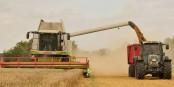 Les récoltes ne suffisent plus pour nourrir le monde. On grignote déjà sur les stocks... Foto: © Michael Gäbler / Wikimedia Commons / CC-BY-SA 3.0