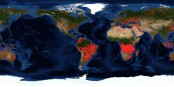 En rouge, les feux enregistrés hier par les satellites de la NASA. Foto: NASA / FIRMS (Fire Information for Resource Management System) / PD