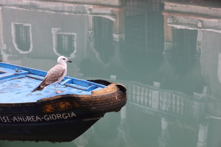 OK 5 Venedig 1