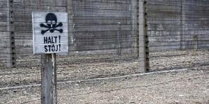 Der Neo-Faschismus wird nicht von selbst verschwinden - wir müssen ihn bekämpfen. Foto: kallerna / Wikimedia Commons / CC-BY-SA 4.0int