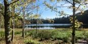 La région où habite le Lombric géant badois  Foto: ANKAWÜ/Wikimédia Commons/CC-BY-SA/4.0Int