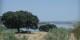 Le Tage (Tajo ou Tejo), à la frontière ibérico-lusitanienne, traverse la Péninsule Ibérique d'Est en Ouest. Foto: Lucyin / Wikimedia Commons / CC-BY-SA 4.0int