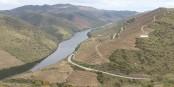 La Vallée du Côa, classée au Patrimoine Mondial par l'UNESCO en 1998, aujourd'hui site expérimental de l'agriculture de demain. Foto: Ruben Queirós / Wikimedia Commons / CC-BY-SA 4.0int