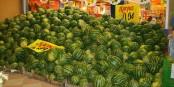Pastèques sur l'étal d'un supermarché d'Ankara, aux couleurs de la charte graphique de Mercadona ! Foto: Ugur Akgöz,  1001mediaSolutions / Wikimedia Commons / CC-BY-SA 2.5