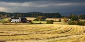 Farm life in Norway... Foto: (c) František Zvardon 2020