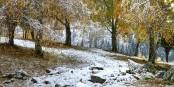 Der Winter legt sich wie eine Decke über die Natur... Foto: (c) František Zvardon 2020