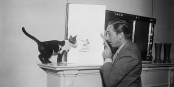 Même les chats aiment bien Mickey, comme le constate ici Monsieur Walt Disney... Foto: Harris & Ewing Collection at the Library of Congress / Wikimedia Commons / PD