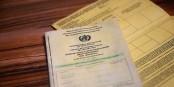 """Malgré tout ce qu'on dit - le carnet de vaccination risque de devenir une sorte de """"passeport bis"""". Foto: SimonWaldherr / Wikimedia Commons / CC-BY-SA 4.0int"""