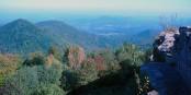 Ein Naturparadies wie den Pfälzerwald zubetonieren? Auf gar keinen Fall! Foto: H. Schreiber / Wikimedia Commons / CC-BY-SA 3.0