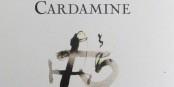 Cardamine - un recueil de poèmes merveilleux signé Camille Loivier. Foto: Esther Heboyan