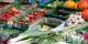 Sans les agriculteurs, nous mangerions du plastique au lieu de ces beaux produits. Foto: Dietmar Rabich / Wikimedia Commons / CC-BY-SA 4.0int